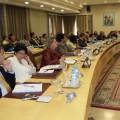Celebrado  el Comité Nacional de Coordinación del programa ART GOLD